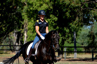 BWB Photography - Busselton Dressage Feb