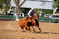 Rustic Pics - Willliams Campdraft