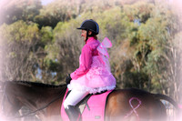 Rustic Pics - Wagin RPC Breast Cancer Dressage Day