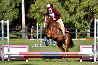 PC45 Showjumping