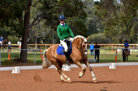 BWB Photography - Bunbury Dressage May