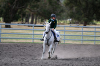 Working Stock Horse ridden by a Junior