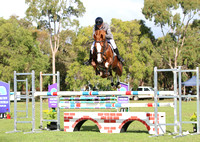 BWB Photography & Rustic Pics - Busselton Winter Showjumping Festival