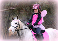 Rustic Pics - Wagin Riding & Pony Club Cancer Awareness Dressage Day