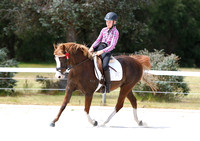 Rustic Pics - King River PC Dressage Training Day